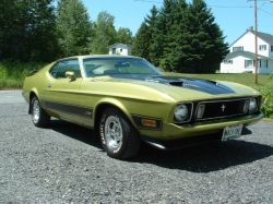 1973 Mach 1 Ford Mustang.
